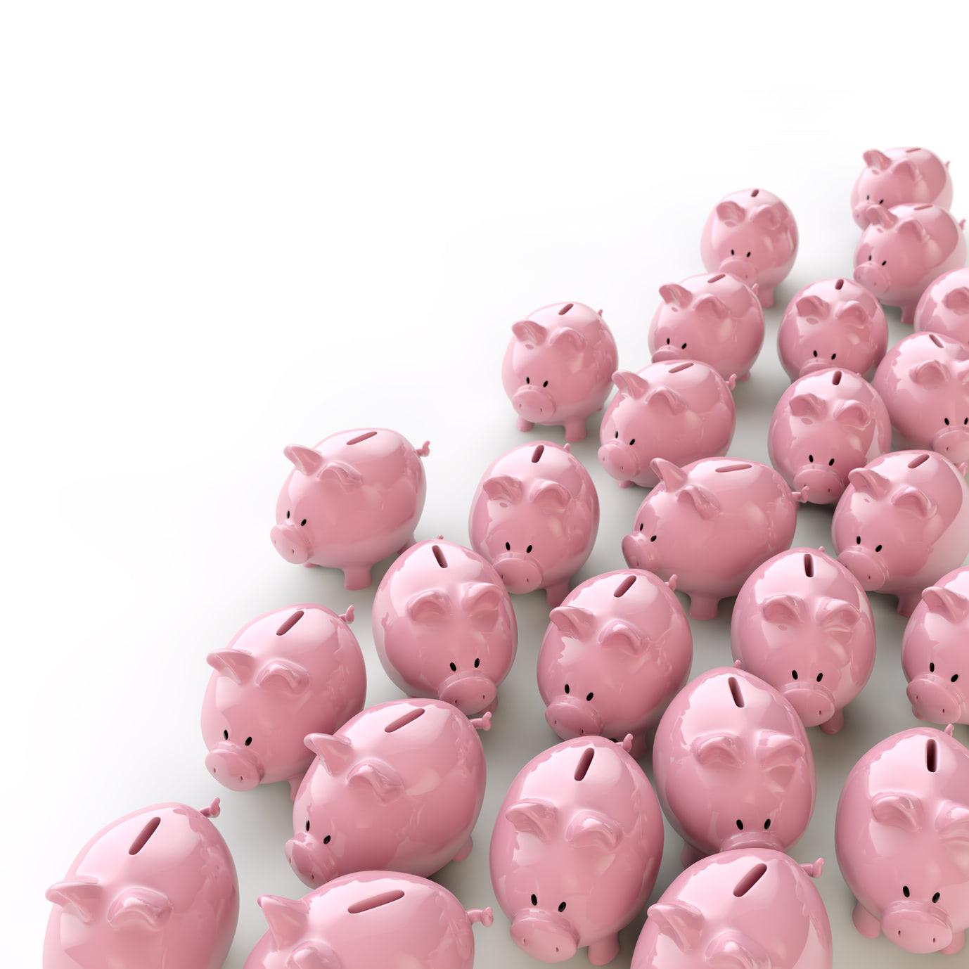 Sparschweine - Gesellschaft