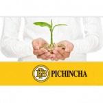 Banco Pichincha baja la rentabilidad de su depósito a 1 año hasta el 2,80% TAE