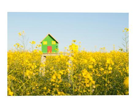 hipotecas_2015
