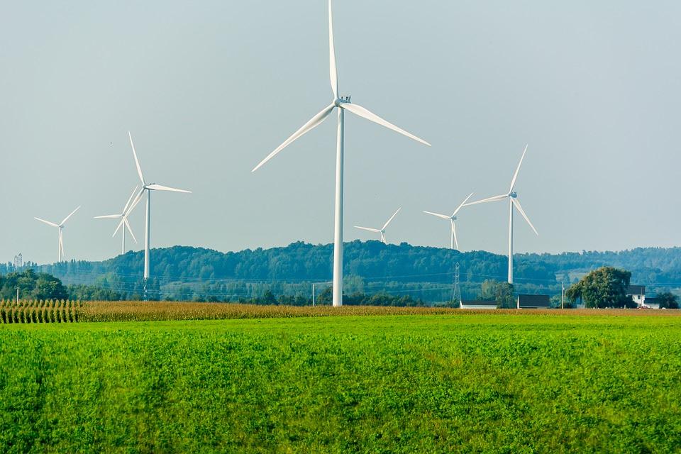 Cada vez hay más consumidores que demanda energía verde. ¿Qué compañías eléctricas son las mejores?