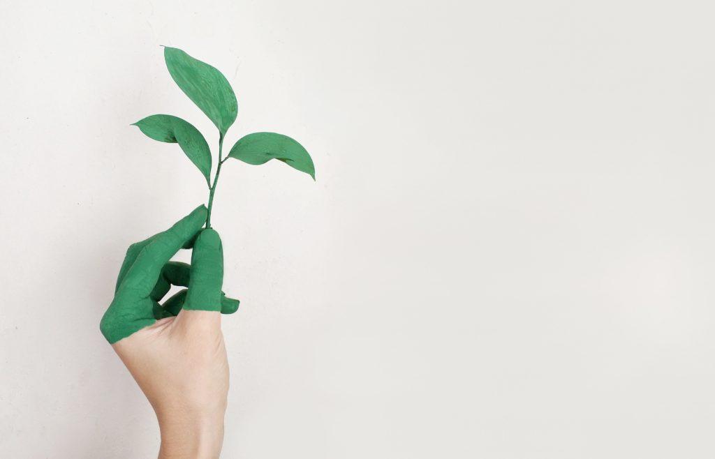 producto de inversión verde