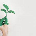 Solo el 30% de los bancos ofrece préstamos ecológicos