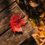 Las 3 mejores cuentas sin comisiones del ranking de octubre